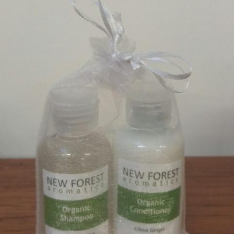 mini-shampoo-and-conditioner-web