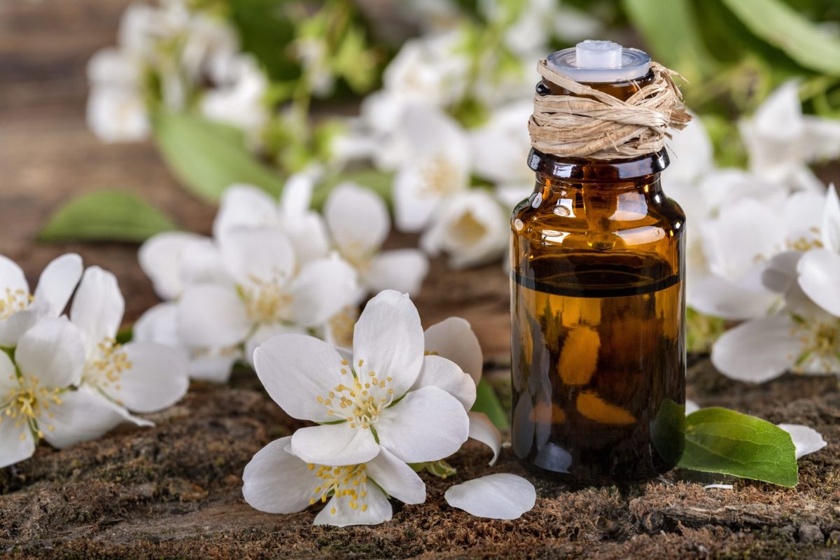 Jasmine Essential Oil - the perfect scent for your Valentine